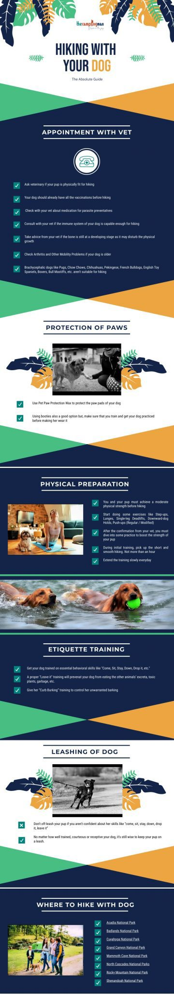 Infographic of Hiking with Your Dog 1