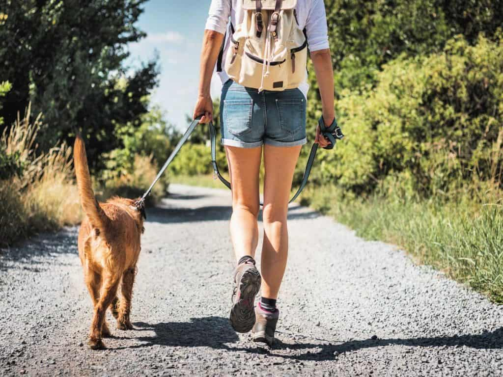 beautiful girl hiking with her dog