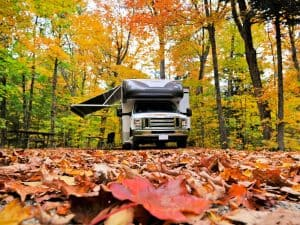 RV is parked in a beautiful forest