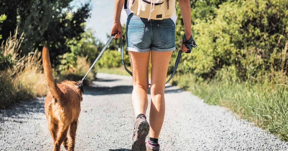 beautiful girl hiking with her dog