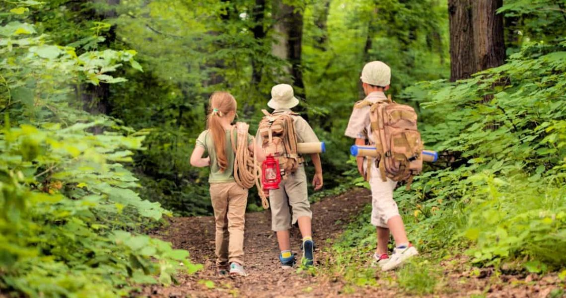 3 kids hiking in the forest
